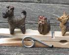 Miniatyyrikoiria: kerrynterrieri, yorkshirenterrieri ja australianterrieri, 2013
